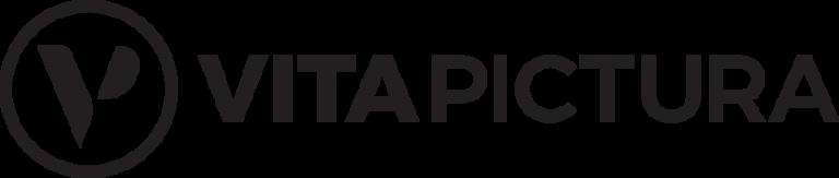 Vita Pictura logo